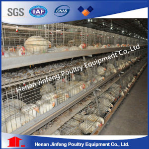 Poultry Farming Equipment/Layer Chicken Cage/ Broiler Chicken Cage pictures & photos