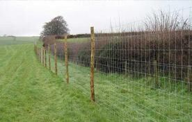 High Tensile Steel Field Fence pictures & photos