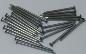 Common Round Wire Nail, Polish Common Nail Making Machine pictures & photos