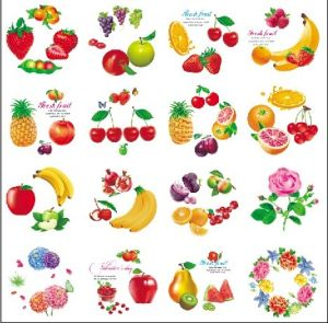 Round Shape Cartoon fruit Flower Design Iml, in Mold Label pictures & photos