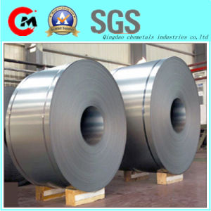 Hot Dipped Galvanized Steel Sheet in Coil pictures & photos