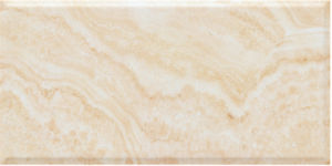 Top Quality Floor/Wall Tiles with Saso (3AD63558) pictures & photos