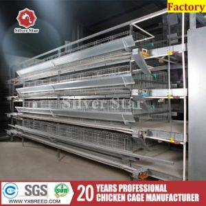 Large Capacity Poultry Equipment Layer Chicken Farm Storage Cage pictures & photos