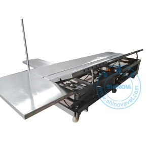 Large Animals Veterinary Operating Table (OT-03BV) pictures & photos