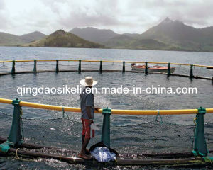 Deep Water Salmon Cage (SK-085) pictures & photos