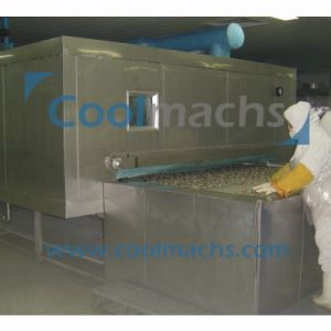 Tunnel Type Quick Freezer for Fish Shrimp Dumplings Fish Seafood pictures & photos