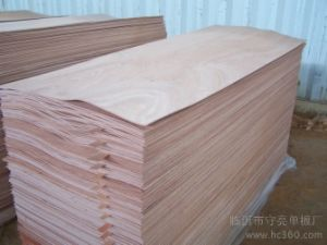Hot Sale High Quality Commercial Plywood