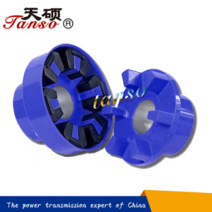 Chinese Manufacturer H Type Flexible Jaw Coupling Instead of N-Eupex Series pictures & photos