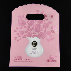Plastic Gift Grade Packaging Bag with Custom Logo Design Printing pictures & photos