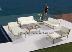 New Design Hotel Furniture Outdoor Patio Pool Side Furniture Sofa Set with Alum &PE-Rattan Furniture pictures & photos