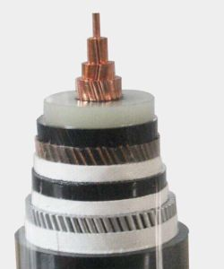 0.6/1kv PVC Insulated and Jacket Swa Power Cable for Electricity Supply and Transmission