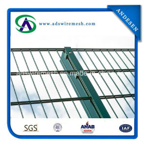 Twin Horizontal Wire Mesh Fencing pictures & photos
