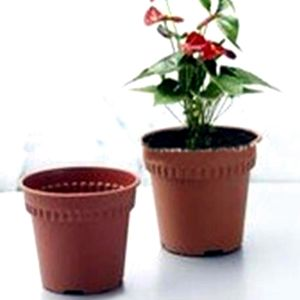 China Plastic Flower Pot Plastic Flower Pot Manufacturers Suppliers Price | Made-in-China.com  sc 1 st  Made-in-China.com & China Plastic Flower Pot Plastic Flower Pot Manufacturers ...