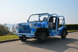 Camouflage Beach Sightseeing Car with Gasoline Engine