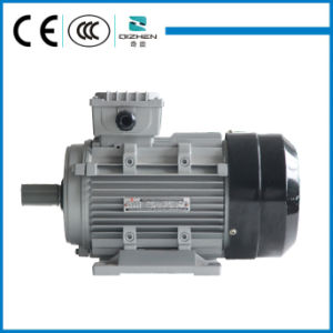 Aluminium Body Three Phase Motor pictures & photos