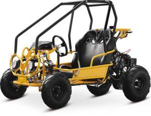 China 110cc Go Kart, 110cc Go Kart Wholesale, Manufacturers