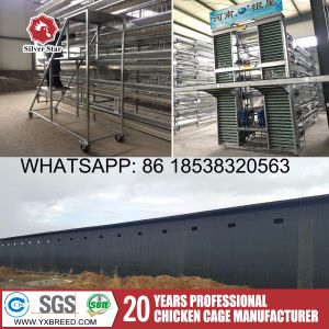 Battery Cage with 3.0mm Hot Galvanized International Standard Wire Mesh for Kenya Farm pictures & photos