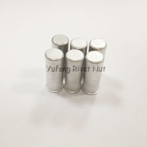 Aluminum Small Head Knurled Body Rivet Nut with Closed End pictures & photos