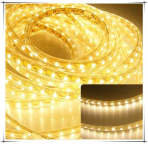 5630 High Lumen Flex LED Strip Color Stripe 2835 120V pictures & photos