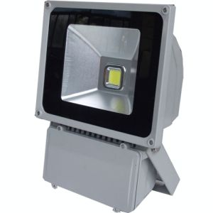 150W Meanwell Driver CE RoHS LED Flood/Outdoor Light