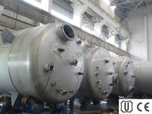 Stainless Steel 316L Fine Chemical Reactor (P029) pictures & photos