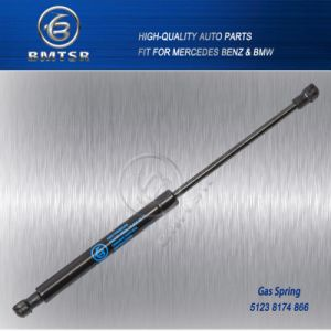 Auto Gas Spring for BMW 5 Series E39 51238174866 pictures & photos
