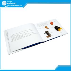 Professional Hight Quality Casebound Child Book Printing pictures & photos