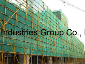 Global Standard Green Construction Safety Net pictures & photos