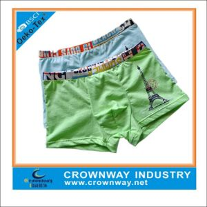 Mixed Color Boys Cotton Boxers Shorts/Underwear with Logo pictures & photos