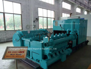 Five-Cylinder Single-Acting Reciprocating Piston Pump (BW-2500/16) pictures & photos