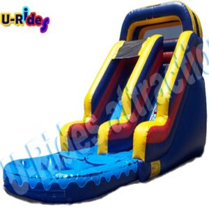 Customized inflatable water game inflatable water slide inflatable bouncer slide with pool pictures & photos