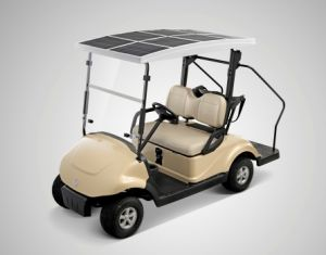 Smart&Useful Multifunctional 2 Seats Golf Cart with Low Price, Solar Panel Roof