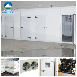 Johnson Deep Freezer Cold Storage for Food Processing