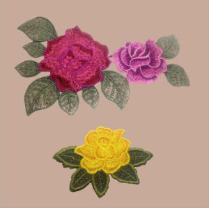 Applique Work Designs Embroidery Applique for Dresses pictures & photos
