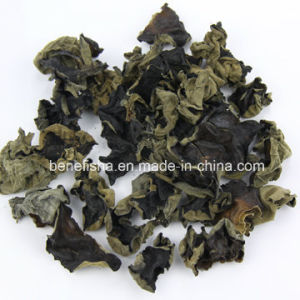 Dried Long Quan Black Fungus pictures & photos
