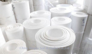 Soft Expanded Pure PTFE Teflon Sheet pictures & photos