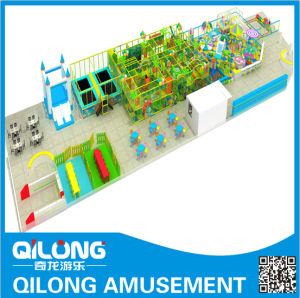 Rich Toys for Playground (QL-1126D) pictures & photos