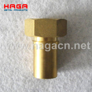 DIN2817 Brass Female Hose Tail with Smooth Hose Shank pictures & photos