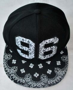 Polyester Baseball Cap, Patch Embroidery Hat, Snapback Cap