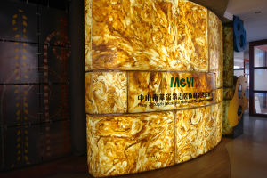 Artificial Onyx Wall Charming/Light/ Colorful Artificial Stone pictures & photos