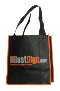 Large All Purpose Carry Bag (hbnb-474) pictures & photos