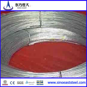 Galvanized Iron Wire (SAE 1006) Made in China pictures & photos