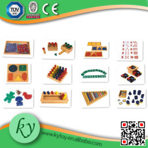 Popular Montessori Material Teaching Aid for Preschool