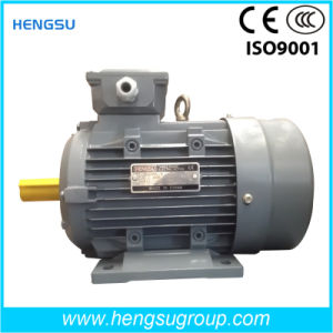 Y2 Ms Electric Three Phase Asynchronous Squirrel-Cage Induction Motors Induction Motor pictures & photos