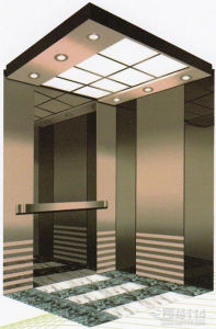 Luxury Home Elevator for House Use