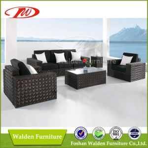 Wicker Furniture, Rattan Sofa Set Patio Furniture (DH-N9024)
