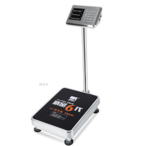 Digital Weighing Ss Weighing Scale (DH~531) pictures & photos