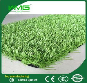Beautiful Synthetic Grass for Football Field pictures & photos