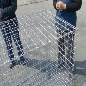 50*50mm Mesh Size Galvanized Welded Gabion Box