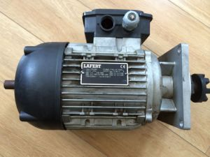 Used \ Second Hand Lafert Motor